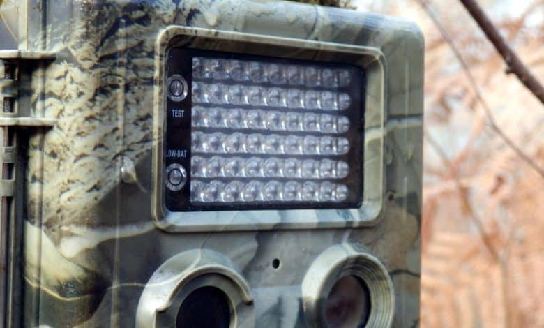 Photo of The 10 Best Trail Cameras for 2020 – Reviews & Buyer's Guide
