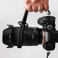sony mirrorless cameras