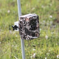 trail camera installed on the ground