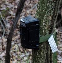 black game camera
