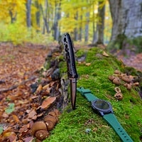 knife in the forest